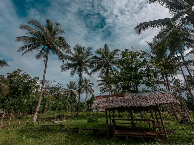 Visite d'un village pour aller dans la jungle